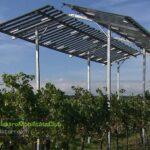 Kompetenztreffen Wien plus Livestream - Agro-Photovoltaik im Weingarten | Agro Phozovoltaik